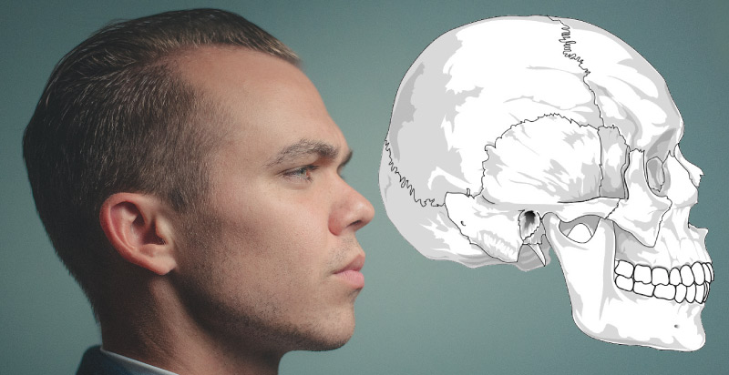 Side view of a man's head next to a drawing of a skull depicting the TMJ